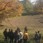 tra-gli-alberi-autunno
