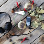 La voce degli alberi - audioguida ekit olfattivo